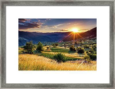 July Sun Framed Print