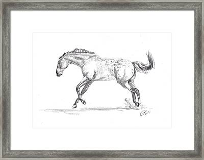 Jumping Around Framed Print