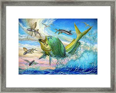 Jumping Mahi Mahi And Flyingfish Framed Print by Terry Fox