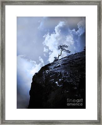 June 14 2010 Framed Print