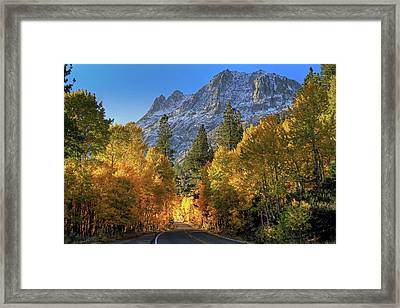 June Lake Loop Framed Print by Donna Kennedy