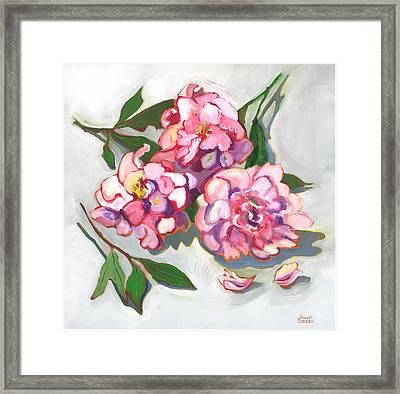 June Peonies Framed Print