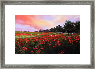 June Poppies Framed Print by Dianna Ponting