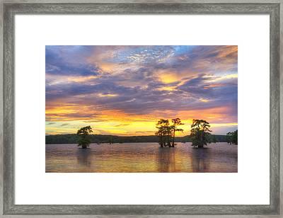 June Sunset At Caddo Lake 3 Framed Print by Rob Greebon