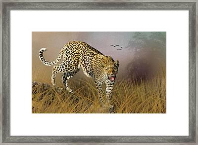 Jungle Attitude Framed Print by Diane Schuster