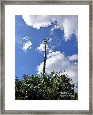 Framed Print featuring the photograph Jungle Bungee Tower by Francesca Mackenney
