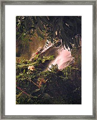 Jungle Framed Print by Utopia Concepts
