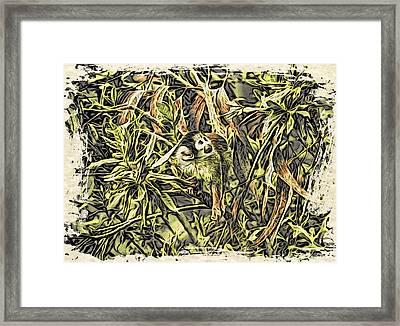 Jungle George Framed Print