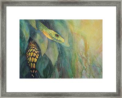 Jungle Guardian Framed Print by Judy Raley