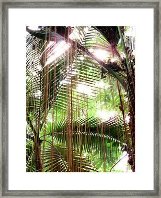 Jungle In There Framed Print
