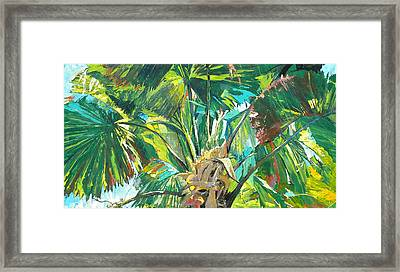 Jungle Framed Print by Jan Farara