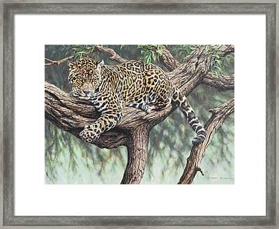 Jungle Outlook Framed Print