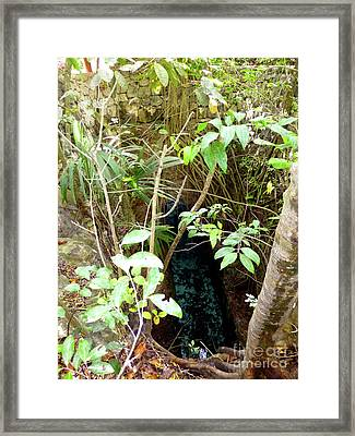 Framed Print featuring the photograph Jungle Stream by Francesca Mackenney