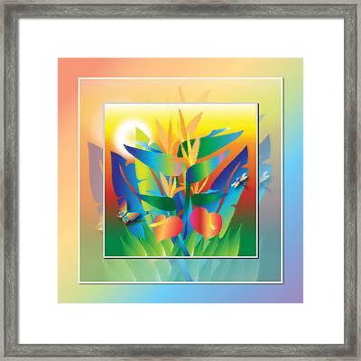Jungle Sunset Framed Print by Jack Potter