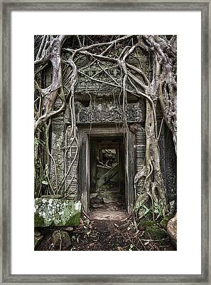 Jungle Temple Door #1 Framed Print