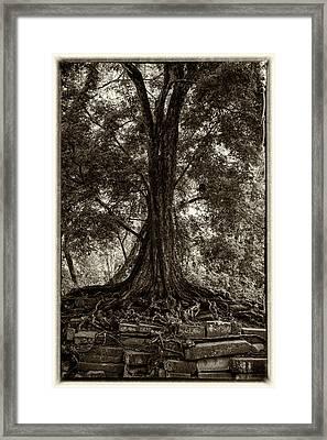 Jungle Tree Framed Print