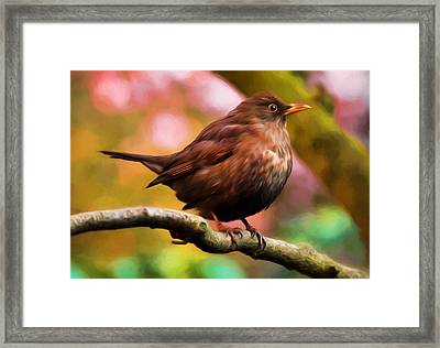 Jung's Throttle Bird Framed Print by Georgiana Romanovna
