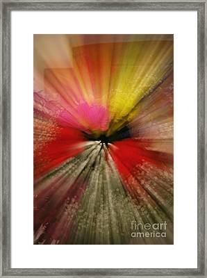 Just A Blur Framed Print by Michelle Hastings