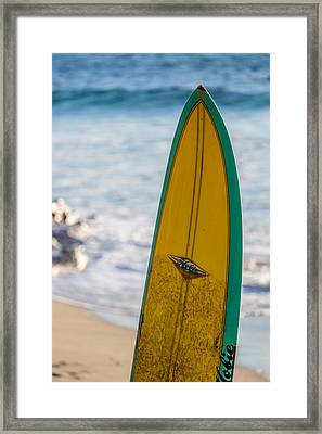 Just A Hobie Of Mine Framed Print by Peter Tellone