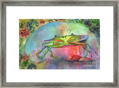 Just A Little Crabby Framed Print by Amy Kirkpatrick