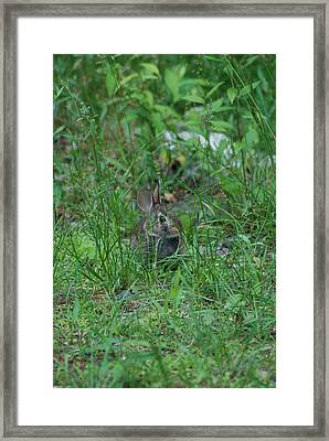 Just A Little Farther Framed Print by Clay Peters Photography