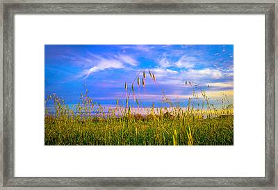 Just A Little Grainy Framed Print by Kenny Green