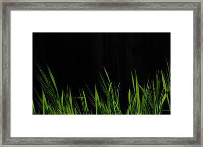 Just A Little Grass Framed Print