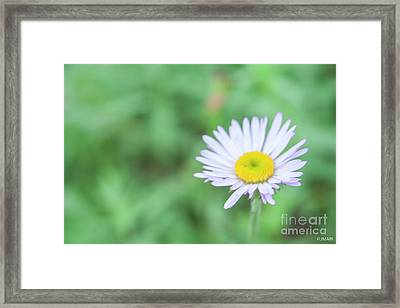 Just A Little Sunshine Framed Print