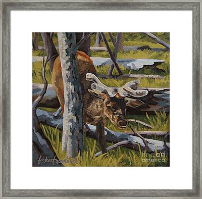 Framed Print featuring the painting Just A Peek by Erin Fickert-Rowland