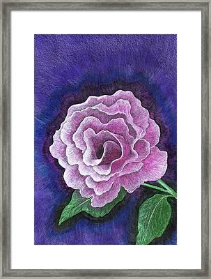 Just A Rose Framed Print