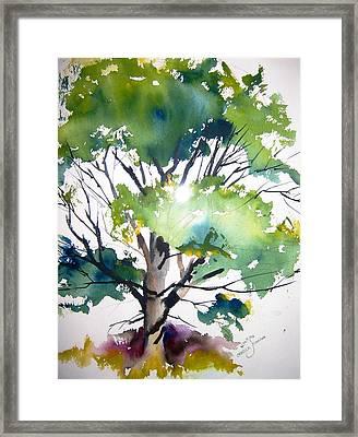 Just A Tree Framed Print