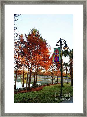 Just A Walk In The Park Framed Print by Jack Norton