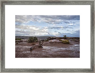 Just After The Rain Framed Print by Jon Glaser