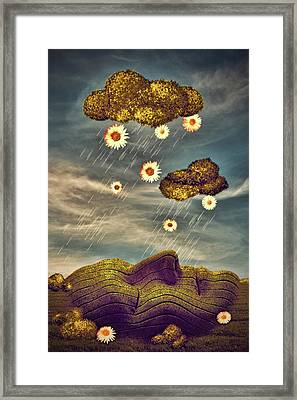Just Another Summer Rainy Day Framed Print