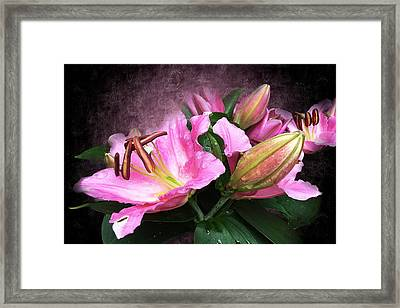 Just Beautiful  Framed Print