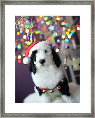Framed Print featuring the photograph Just Believe by Linda Mishler