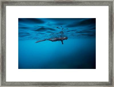 Breathe 2 Framed Print by One ocean One breath
