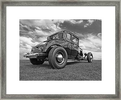 Just Chillin' - Black And White Framed Print by Gill Billington