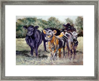 Just Curious Framed Print by J P Childress