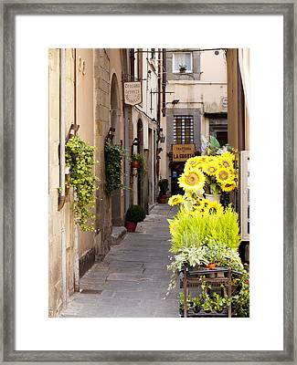 Just Down The Road Framed Print by Rae Tucker
