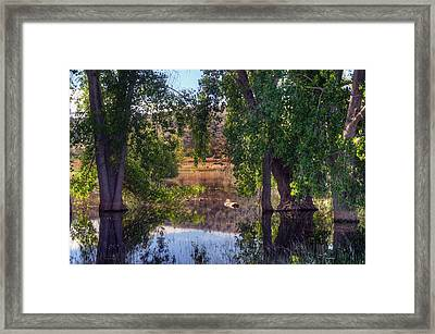 Just Drifting Framed Print by Thomas  Todd