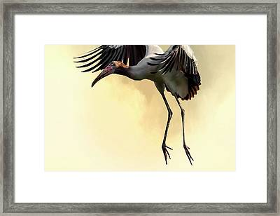 Just Dropping In Framed Print