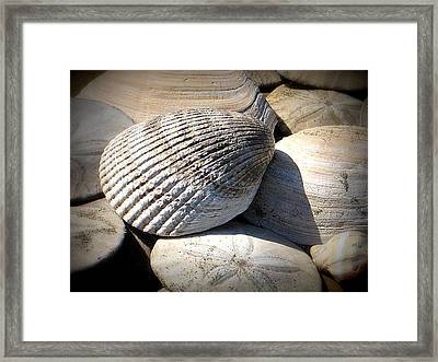 Just Found Framed Print by Mg Blackstock