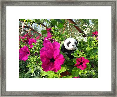 Framed Print featuring the photograph Just Hanging In There by Ausra Huntington nee Paulauskaite