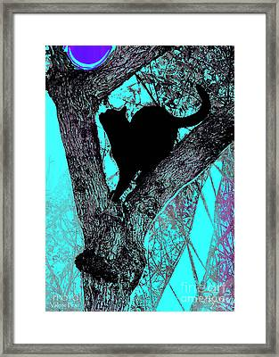 Fauve Cat And Moon Framed Print