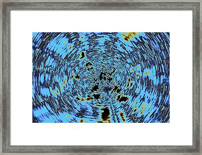 Framed Print featuring the photograph Just Jack  by Tony Beck