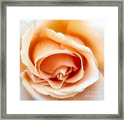 Just Joey Framed Print by Diane E Berry