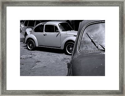 Just Keep Swimming Framed Print by Jez C Self