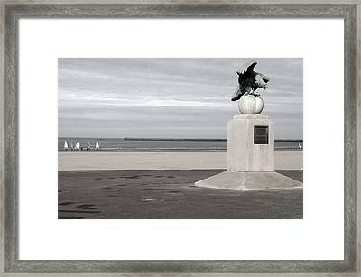 Just Landed Framed Print by Jez C Self