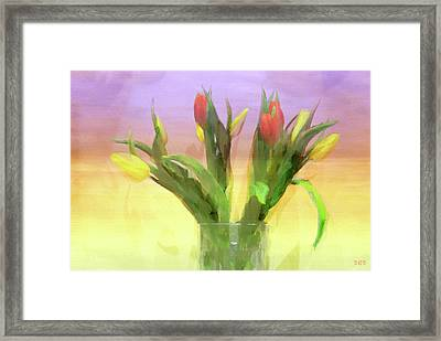 Just Like Spring Framed Print by Declan O'Doherty